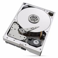 Seagate IronWolf Pro NAS 10TB SATA 3.5IN 256MB ENTERPRISE NAS