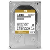 Western Digital Entreprise WD6002FRYZ Gold 6TB SATA  3.5