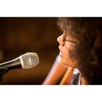 Beyerdynamic TGV50D Stage Vocal Microphone