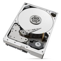 Seagate IronWolf Pro 8TB Ent NAS HDD 3.5in SATA 6GB/S 256MB CACHE