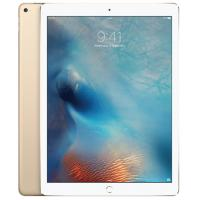 Apple iPad Pro Wi-Fi 128GB Gold (ML0R2X/A)