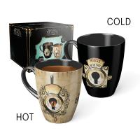 Harry Potter - Muggle Worthy Heat Change Mug