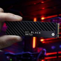 Western Digital Black 500GB SN750 NVMe SSD with Heatsink (WDS500G3XHC)