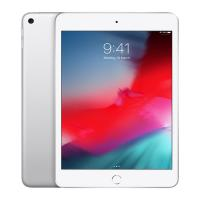 Apple 7.9 inch iPad mini - WiFi 64GB - Silver (MUQX2X/A)