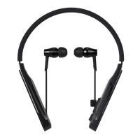 Audio Technica ATH-DSR5BT Wireless Bluetooth In-Ear Headphones