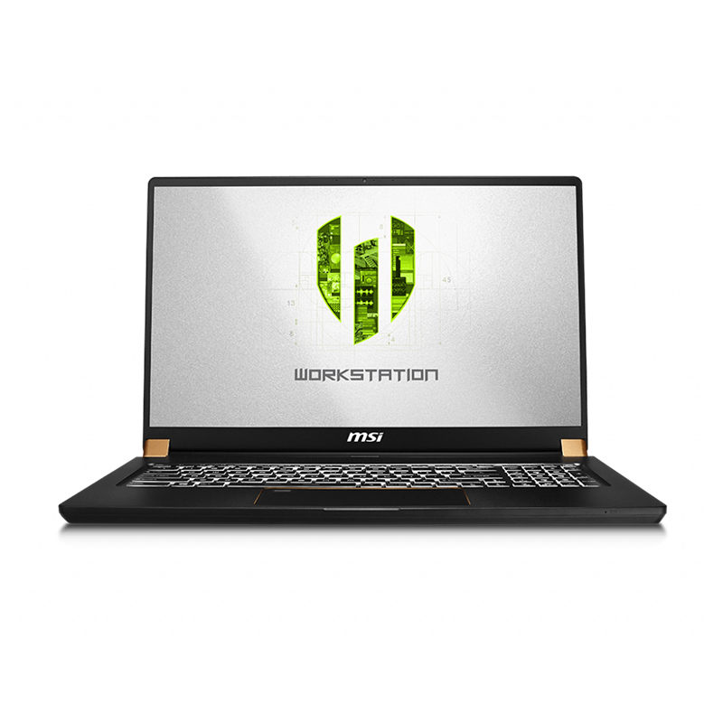 MSI WS75 17.3 FHD i9 9880H Quadro RTX 4000 1TB SSD 32GB RAM W10P Workstation Laptop (WS75 9TL-660AU)