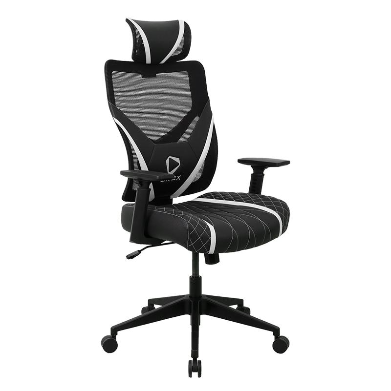 ONEX GE300 Ergonomic Gaming Chair - Black/White