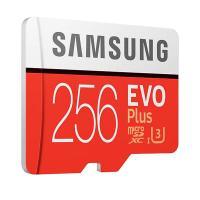 Samsung EVO Plus 256GB C10 100MB/s MicroSDXC Card