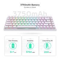 RK ROYAL KLUDGE RK84 Wireless Bluetooth/2.4Ghz 80% RGB Mechanical Gaming Keyboard,Brown Switch