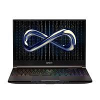 Infinity 15.6in QHD IPS 165Hz R9-5900H RTX3080P 1TB SSD 32GB W10H Gaming Laptop (W5-5R9R8N-999)