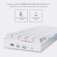 Redragon K530 Draconic 60% Compact RGB Wireless Mechanical Gaming Keyboard, White, Blue Switch
