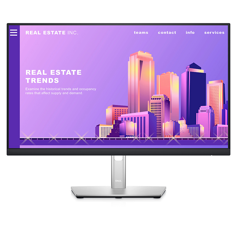 Dell 23.8in FHD IPS 60Hz Monitor (P2422H)