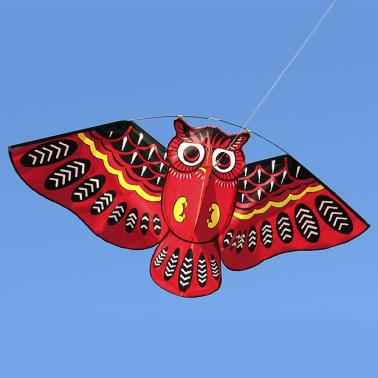 43 x 20 Inch Colorful Cartoon Owl Flying Kite with Kite Line Outdoor Toy for Children